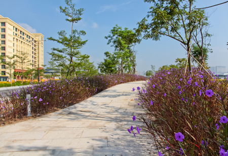 One of the campus landscaping task force's jobs is planning green space