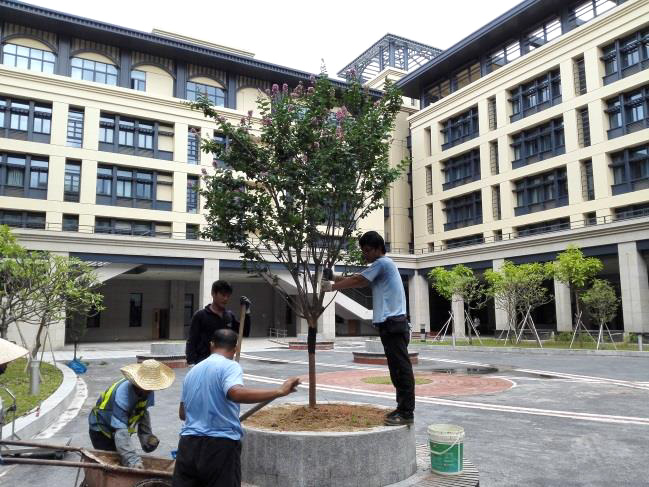 UM strives to build a green campus