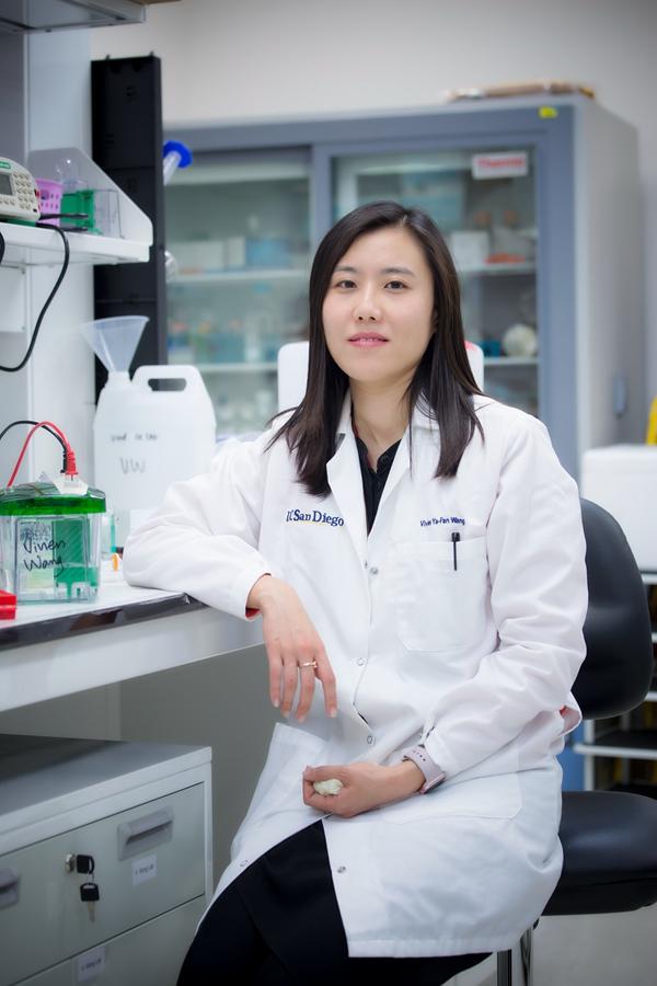 Prof Wang Yafan